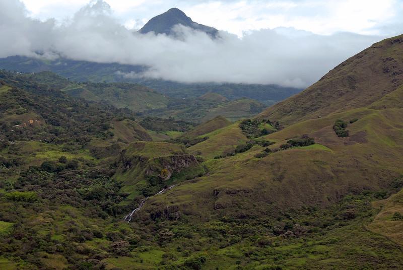 Vegetation gets denser and greener as we go up.