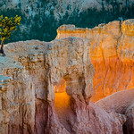 Sunrise Point, Bryce N.P.
