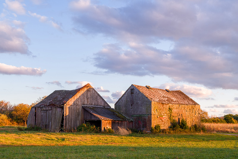 Barns at Sunset, Water Mill