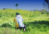 Artist in His Landscape