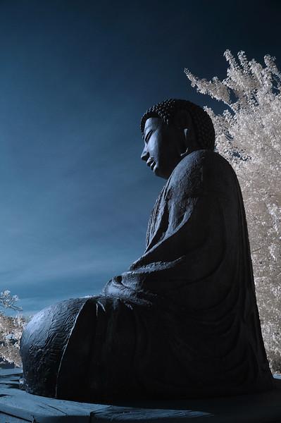 Frozen Buddha, Maui HI, 2012.