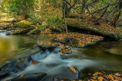 Lower Cove Creek
