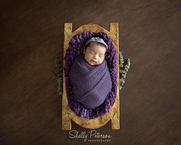 Grape Purple