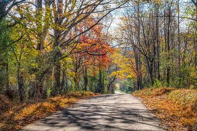 Bushey Gap Road