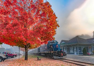 BR Train Fall
