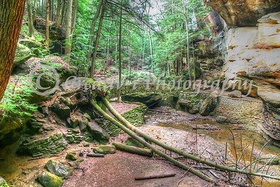 Hocking Hills State Park- Hocking County, Ohio #6