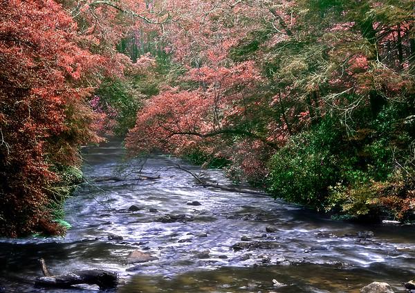 Fightingtown Creek in the Fall
