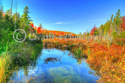Shalda Creek in Fall # 07, Good Harbor Bay- Sleeping Bear Dunes National Lakeshore