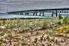 Mackinac Bridge West View #13