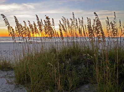 Sunset Beach Seaoats 2