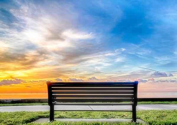 North Shore Park Bench
