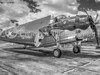 Avenger Torepdo Bomber Williow Run Air Show Piloted by George Bush #1