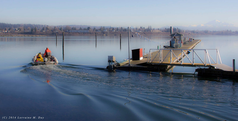 2014-01-25 Semiahmoo Spit