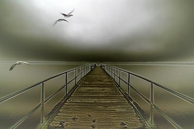 geese flight - original