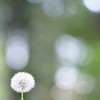 """<a href=""""http://www.canstockphoto.com?r=191578""""><b>Royalty Free Images at Can Stock Photo</b></a>"""