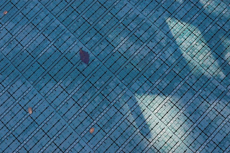 Sidewalk, San Jose, CA, 2003.12.27