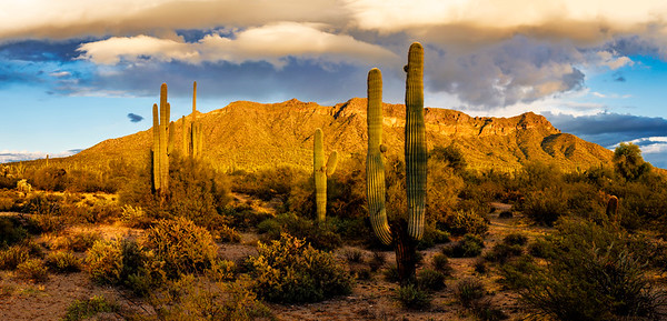 Usery Mountain Park Sunset