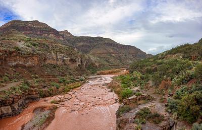 Muddy Salty Waters