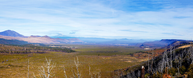 Autumn Musings of Shasta