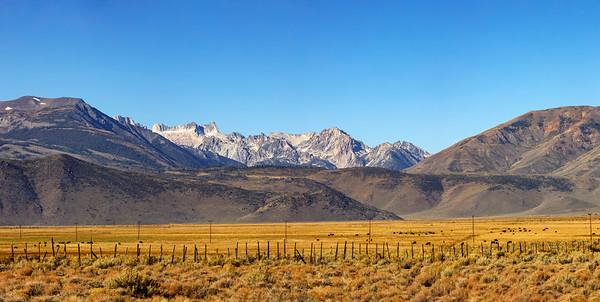 Pastoral Sierras