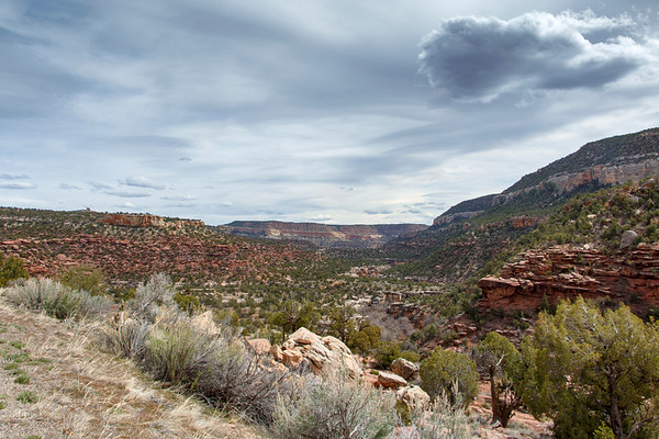 Lion Canyon