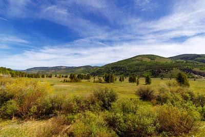 High Mountain Meadows