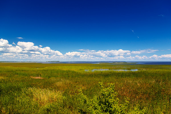 Lake Of The Woods + Bonus Swampland