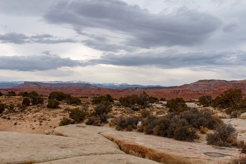 Rock, Trees, Desert, Snow, Sky