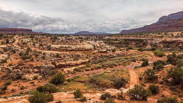 Mud Trail Through The Canyon
