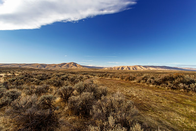 World of Sagebrush