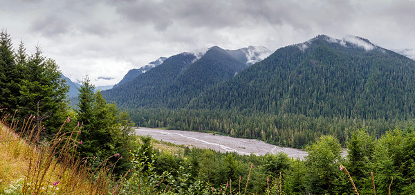 Carbon River Pathway
