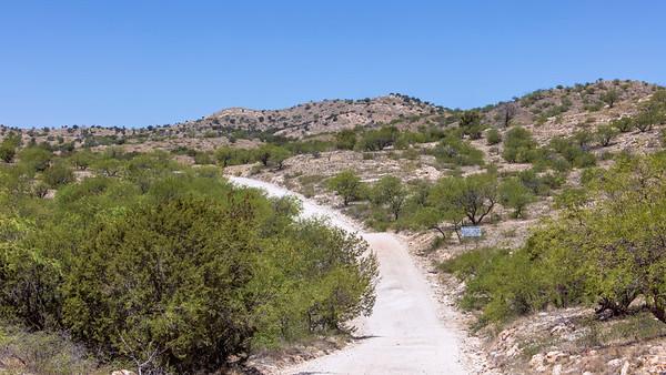 Redington Pass Road, Arizona