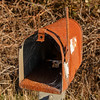 Any Mail for the Spider?