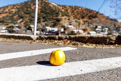 The Apple of Bisbee