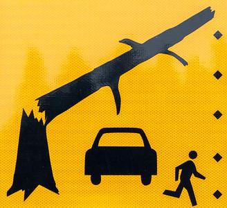 Escape the Timber Carport Death!