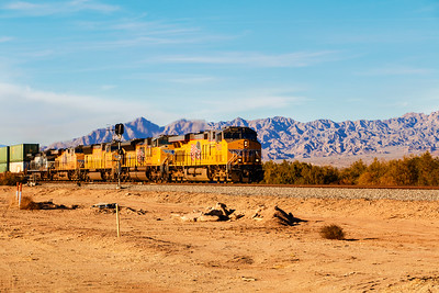 Dash Across the Desert