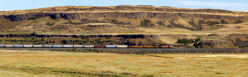 Train in The Palouse