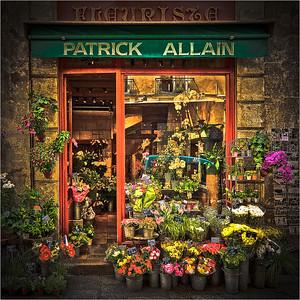 Patrick Allain Fleurista B