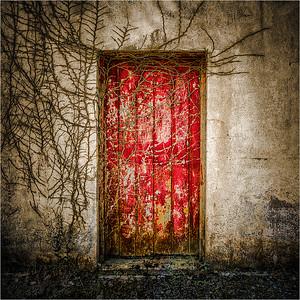 Red Door A