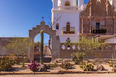 San Xavier del Bac Mission's Cactus Garden