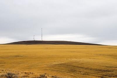 Radio Free Oregon