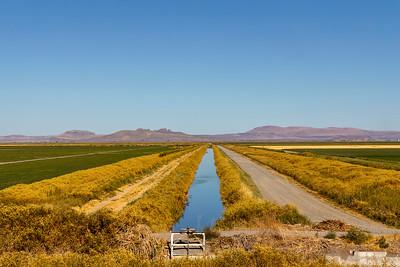 High Desert Farming