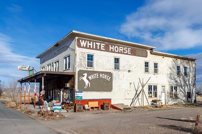 White Horse In Nevada