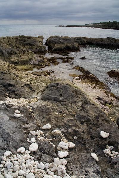 beach at Xel-Ha 1