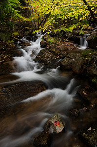 Jordan Stream, Acadia National Park, Maine
