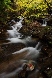 Jordan Stream, Acadia National Park, Maine