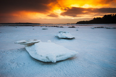 Ice formations left behind by the receding tide on the marsh in Scarborough, Maine.