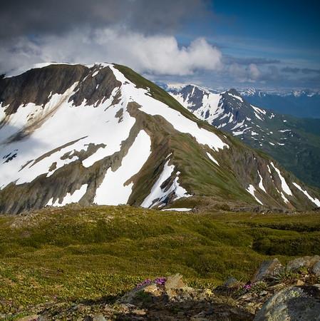 Mt. Roberts