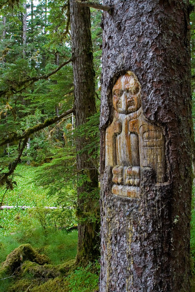Tlingit tree carving