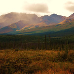 autumn in the Alaskan Range